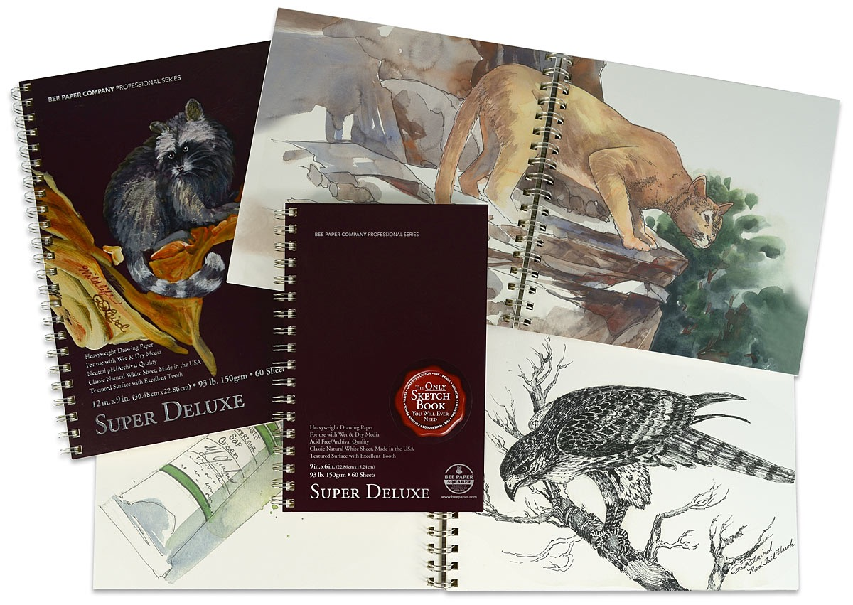 Super Deluxe Drawing Books