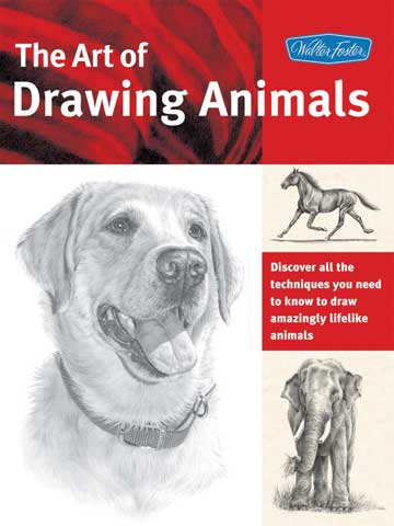 Art of Drawing Series Books
